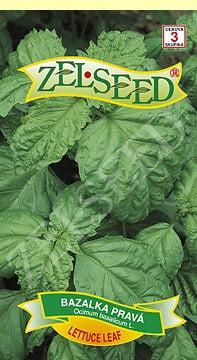 Bazalka pravá Lettuce leaf 0,9g Zelseed