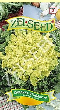 Čakanka štrbáková Moss curled 1g Zelseed