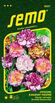 Klinček záhradný PICOTEE 0,25g SEMO