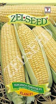 Kukurica cukrová Elan F1 veľmi skorá 28g Zelseed