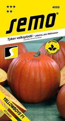 Tekvica YELLOWBOY F1  3g SEMO