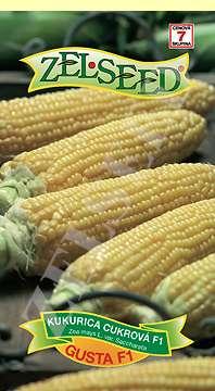 Kukurica cukrová GUSTA 28g stredne neskorá Zelseed