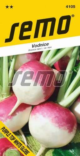 Vodnica okrúhlica PURPLE TOP WHITE GLOBE 2g SEMO