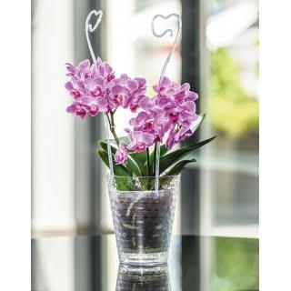 Kvetináč Diamant Petit 14cm číry